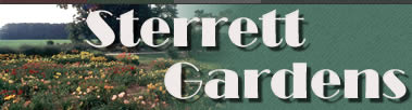 welcome to sterrett gardens.  we grow great daylilies